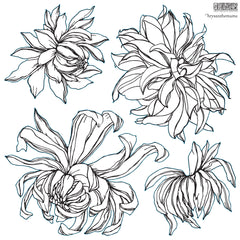 Iron Orchid Designs Chrysanthemum Decor Stamp, 2 Sheets, New Release