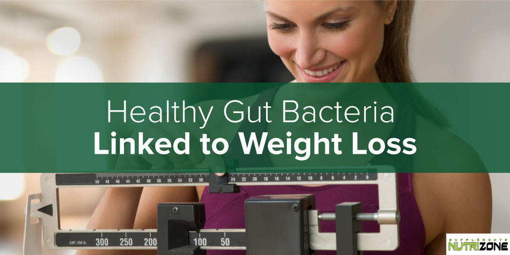 The Importance of Gut Bacteria