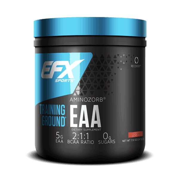EFX TRAINING GROUND EAA 213g.