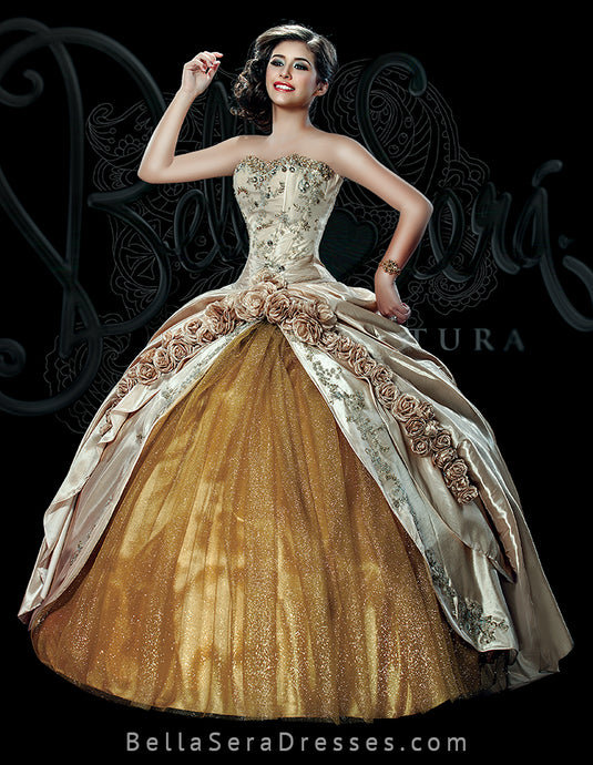 QUINCEANERA GOWN BS - Style 1507