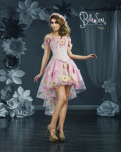 Quinceañera Dress Style BS-1801 - bella-sera-dresses.com