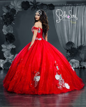 Load image into Gallery viewer, Quinceañera Dress Style BS-1806 - bella-sera-dresses.com