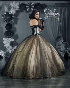 QUINCEANERA DRESS Style 1810 - bella-sera-dresses.com