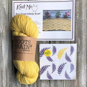 Knit Me Subscription Box Picture with Yarn, Pattern and Project Bag