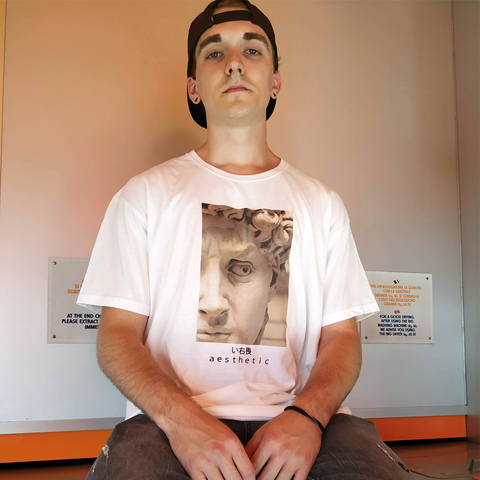 DAVID AESTHETIC - T-Shirt VAPORWAVE 2
