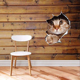 Cat/Dog 3D Vinyl Wall Sticker