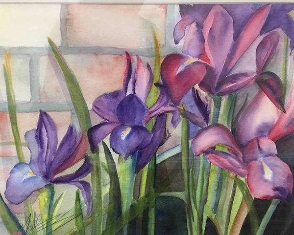 """Iris in Bloom"""