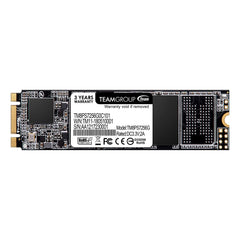 Team MS30 M.2 SATA SSD 256GB