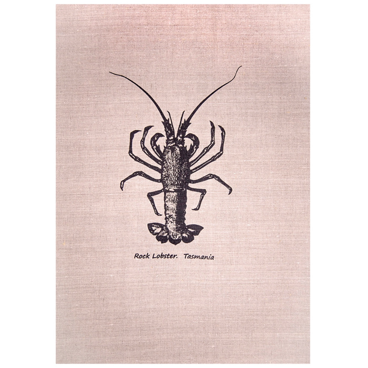 Sea Urchin Design – Tea Towel – Rock Lobster