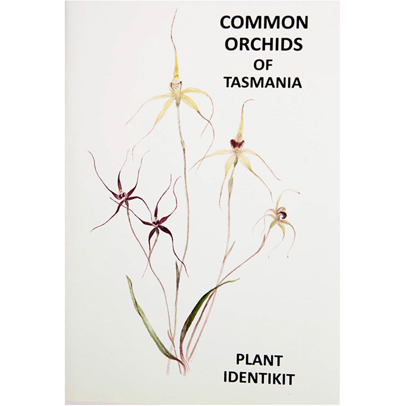 Plant Identikit - Common Orchids of Tasmania