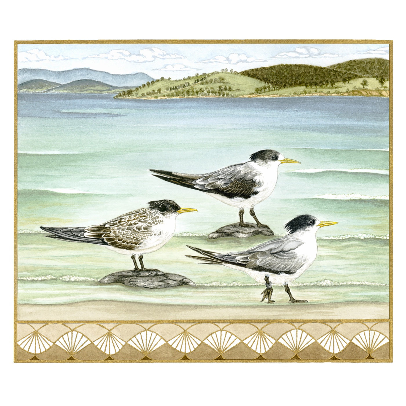 Sylvie Gerozisis - Birds of Tasmania - Art Print - Crested Terns