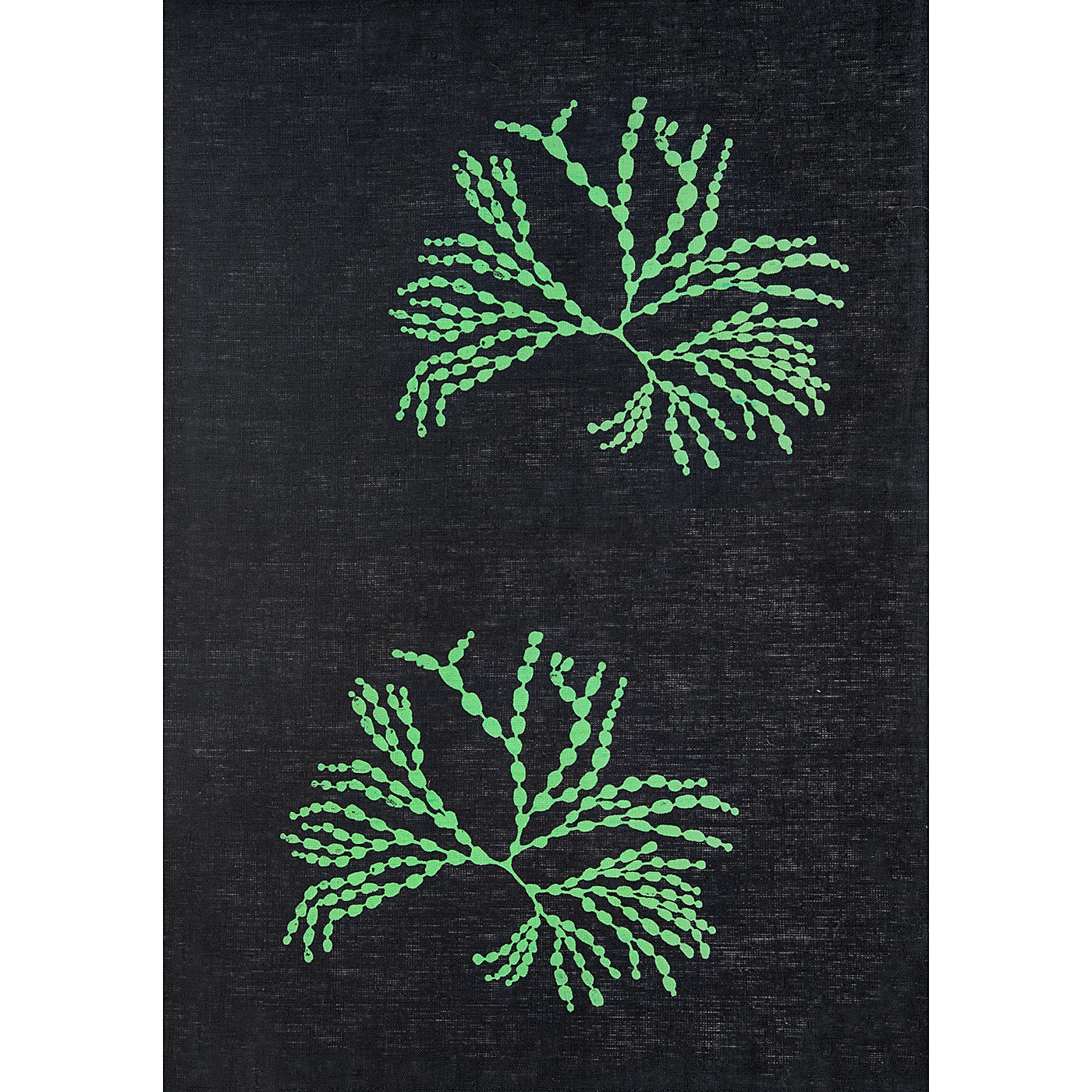 Stalley Textile Co. - Tea Towel - Bubbleweed - Green on Black