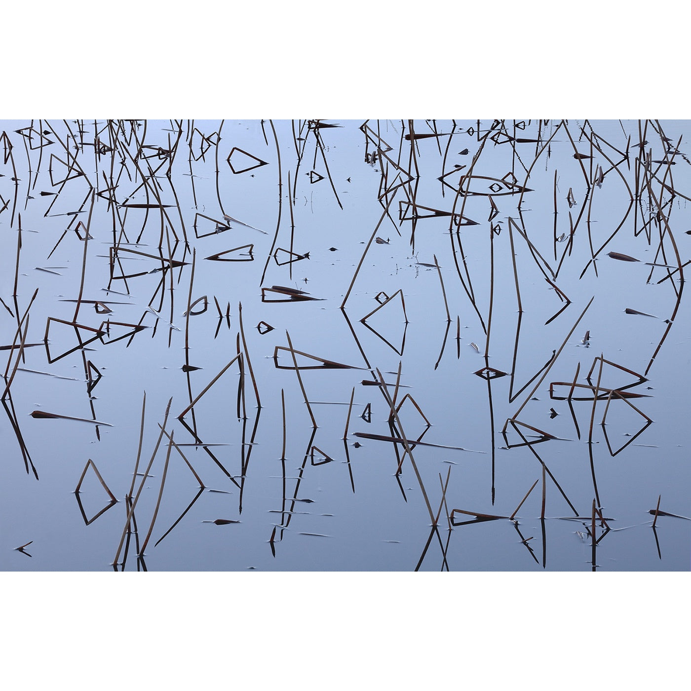 Chris Bell – Reeds and Reflections 2