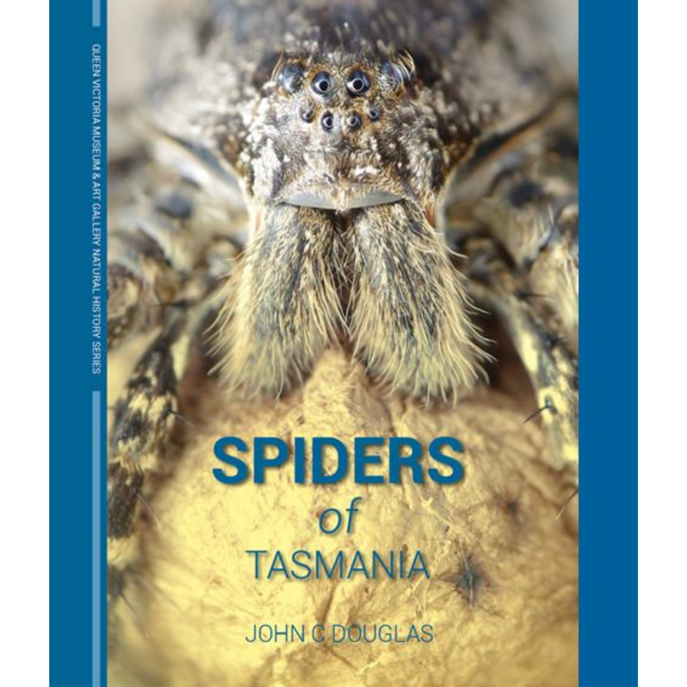 Spiders of Tasmania