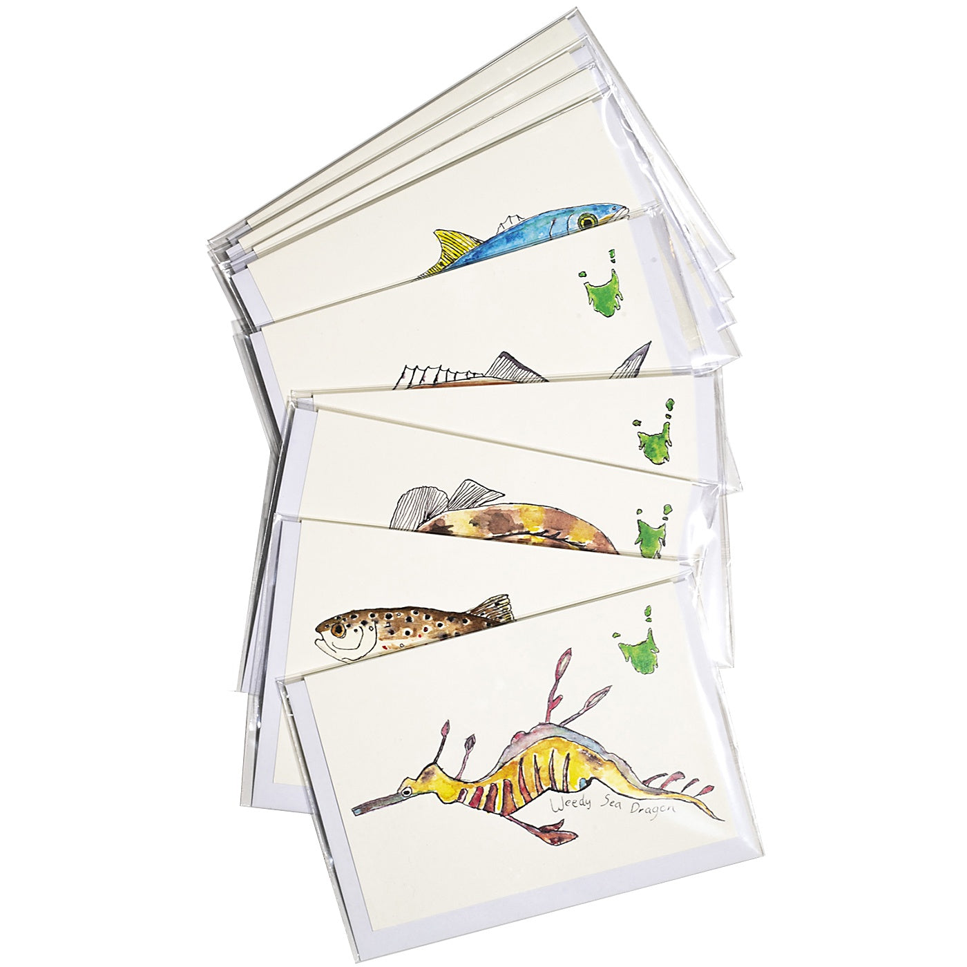 Paris Menadue - Pack of 10 Sea-Life Cards