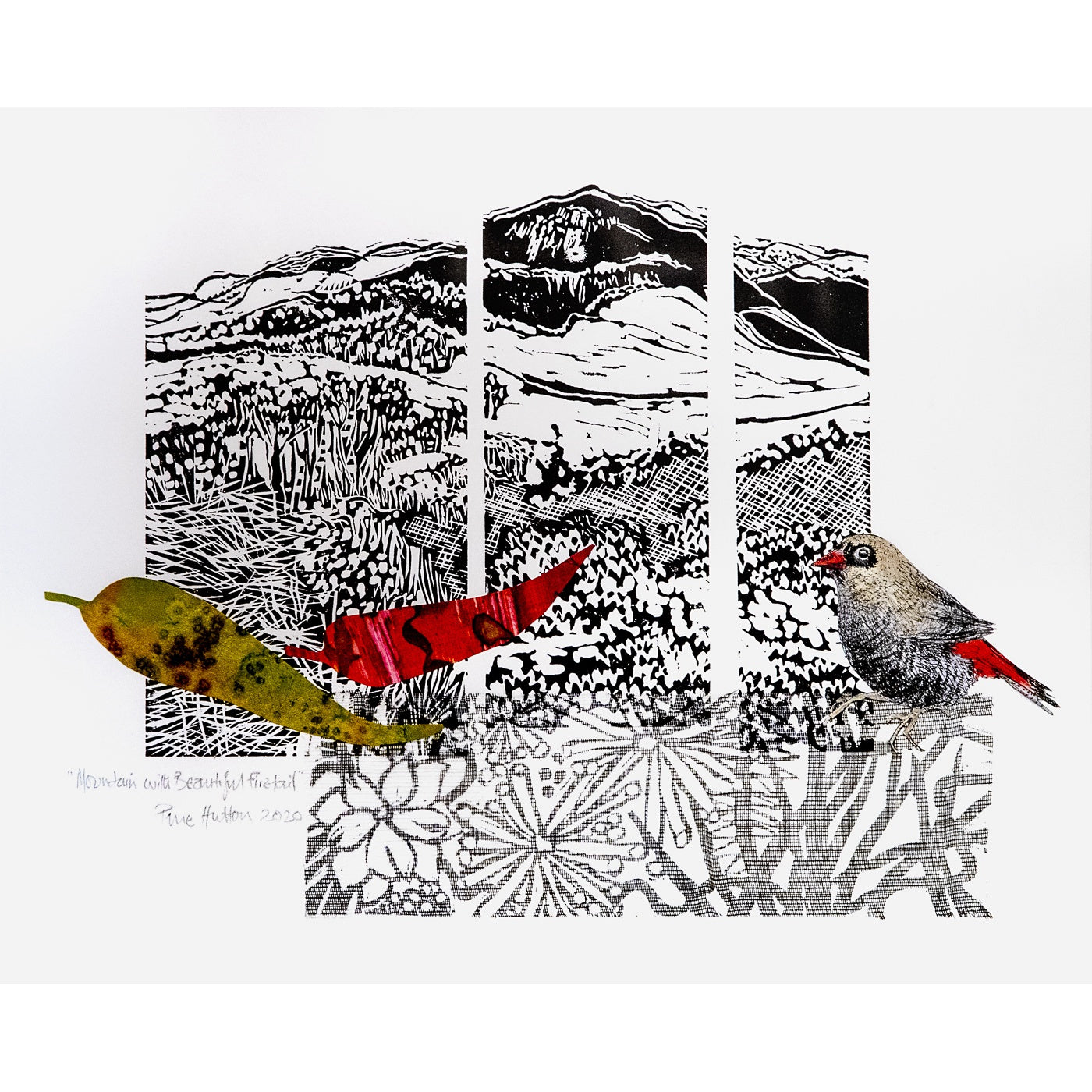 Prue Hutton - Mountain and Beautiful Firetail