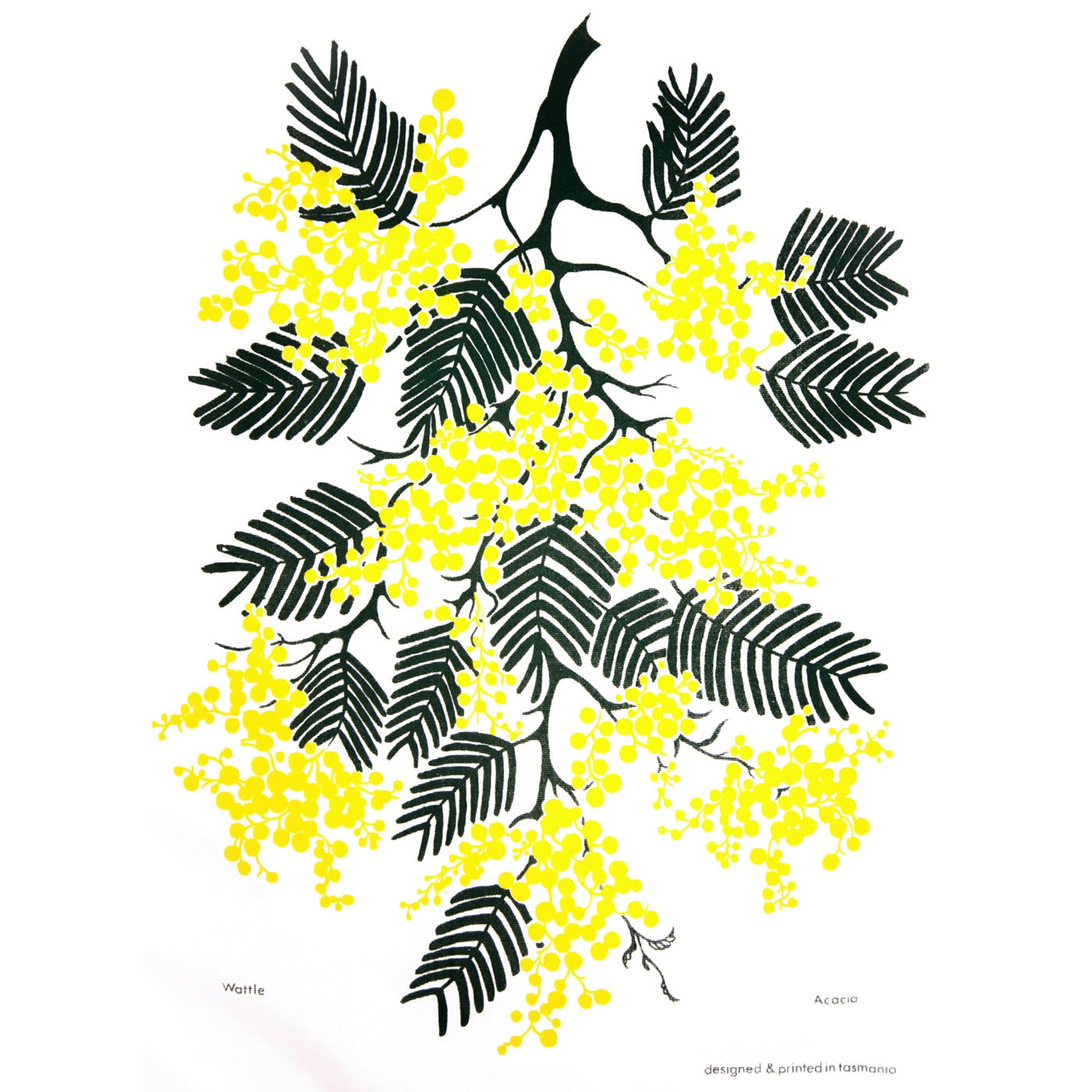 The T-Towel Gallery - Tea Towel - Wattle