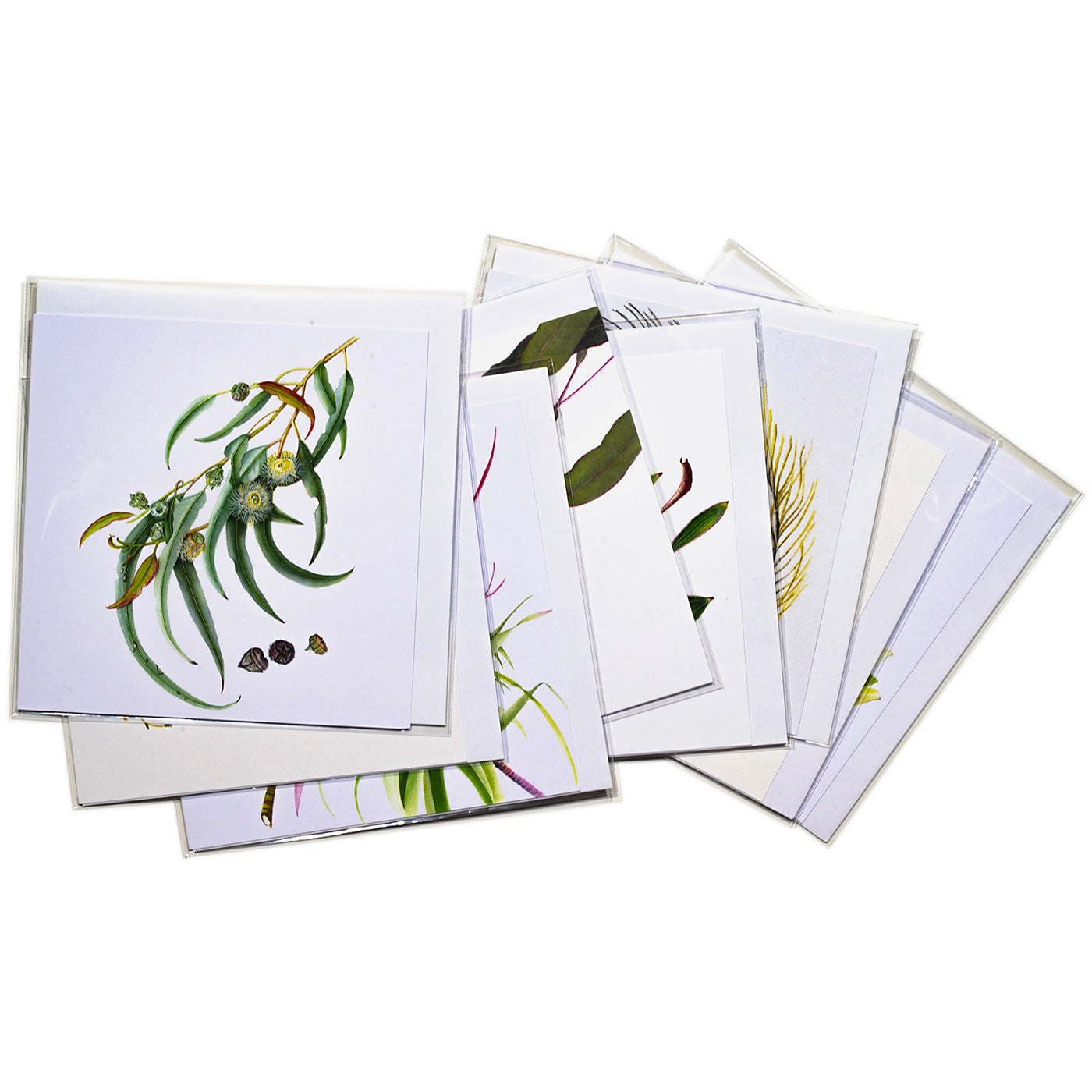 Sue Stuart - Pack of 8 Cards