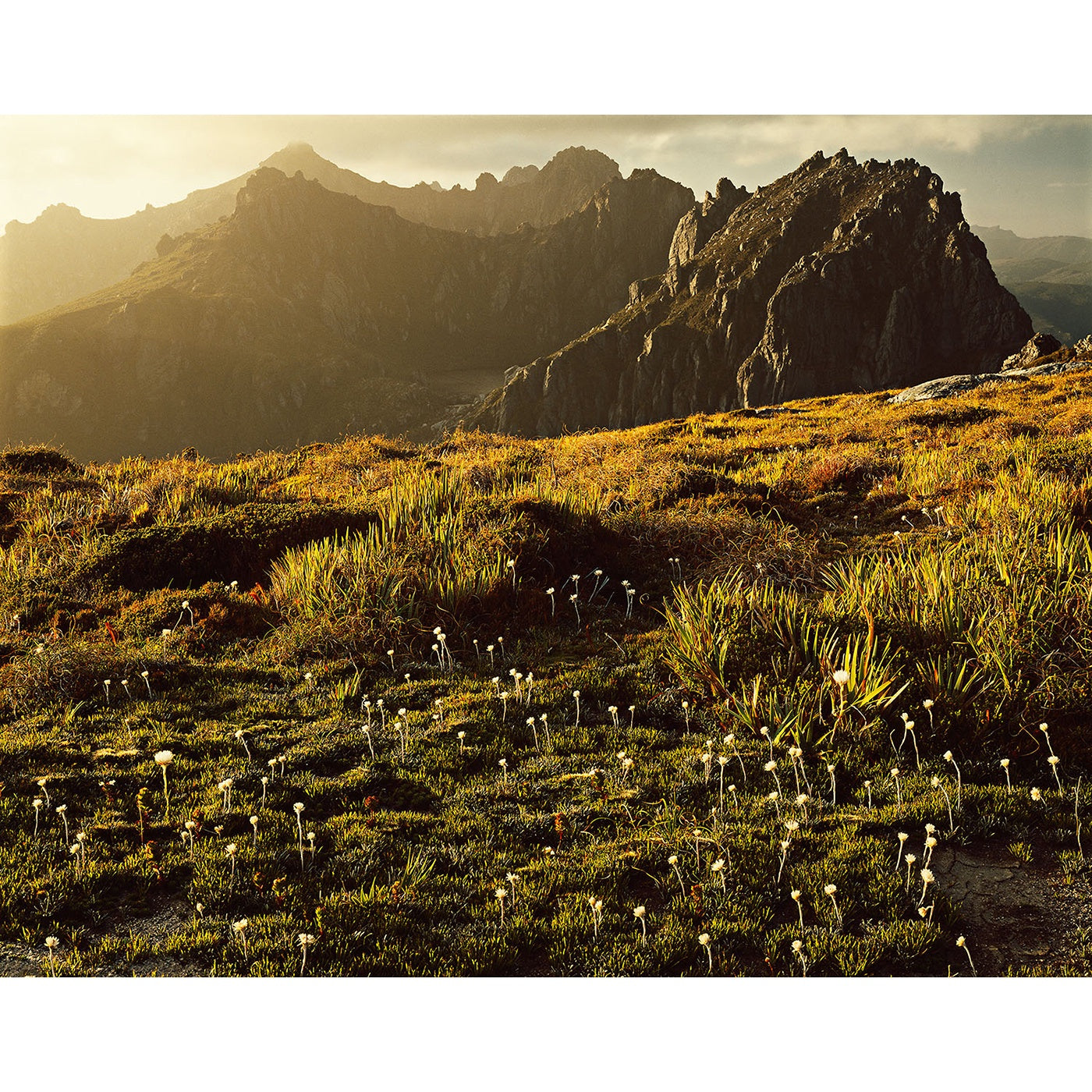 Peter Dombrovskis - Western Arthurs
