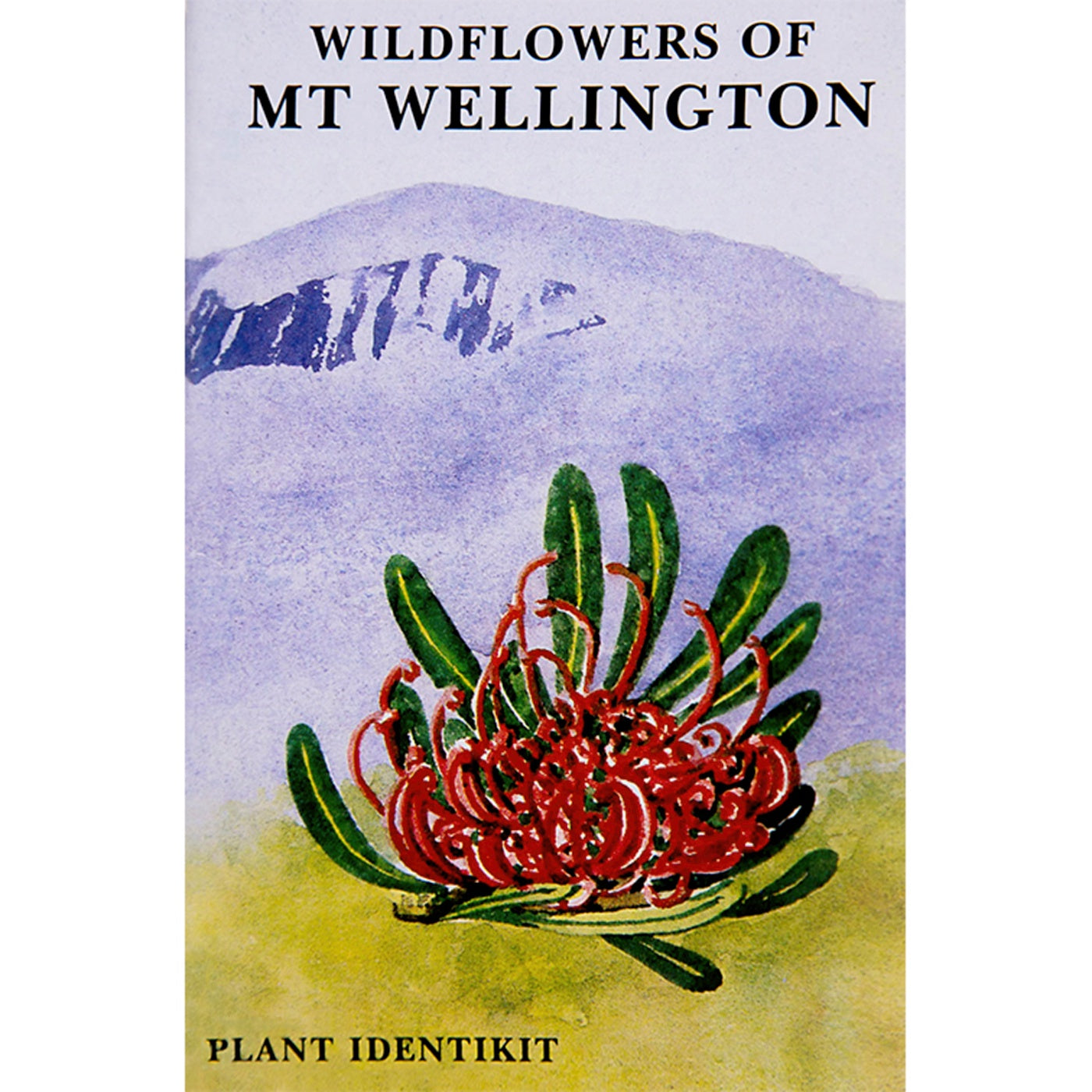 Plant Identikit - Wildflowers of Mt Wellington