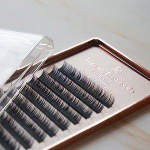 0.10mm Classic/Volume Lashes (New Design)