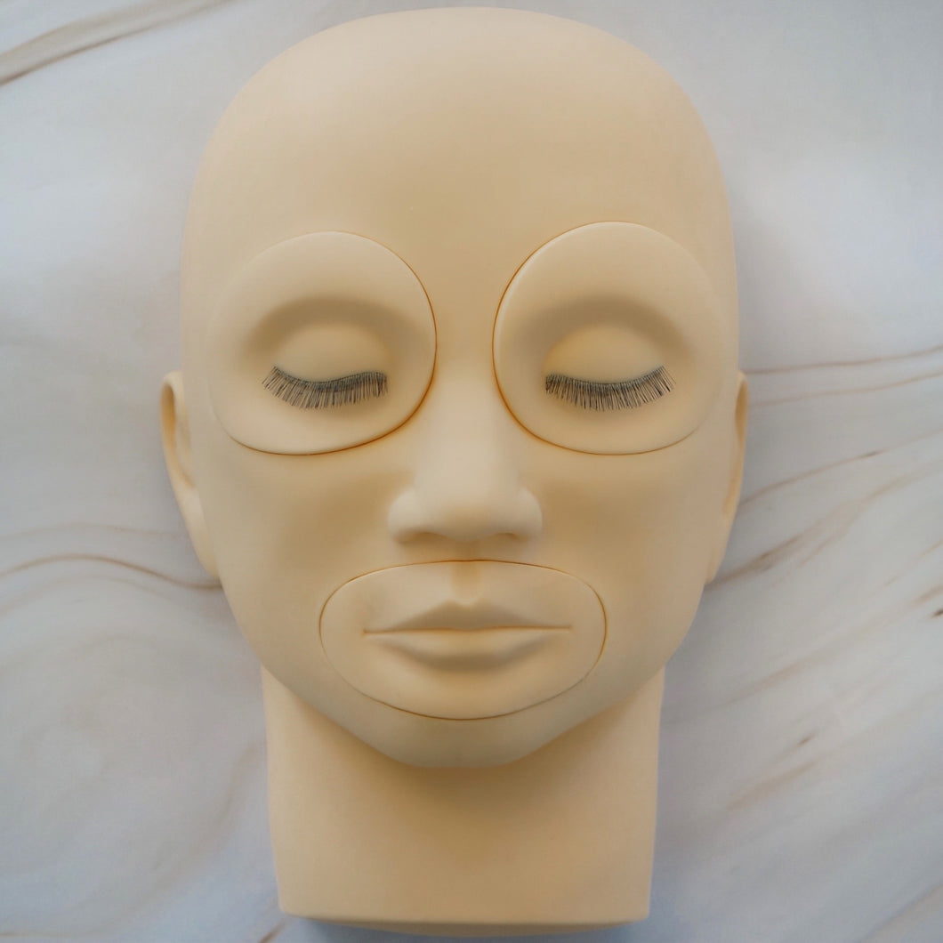 Mannequin Training Head