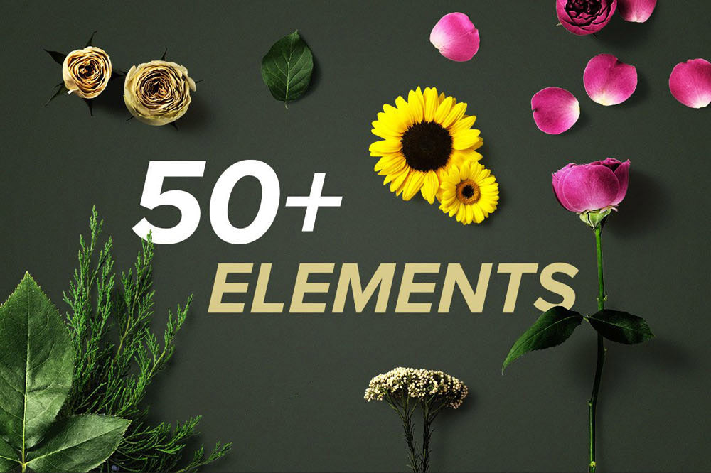 Flower Boom Graphics Pack