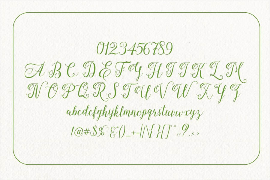 Wall Palace Script Font Family