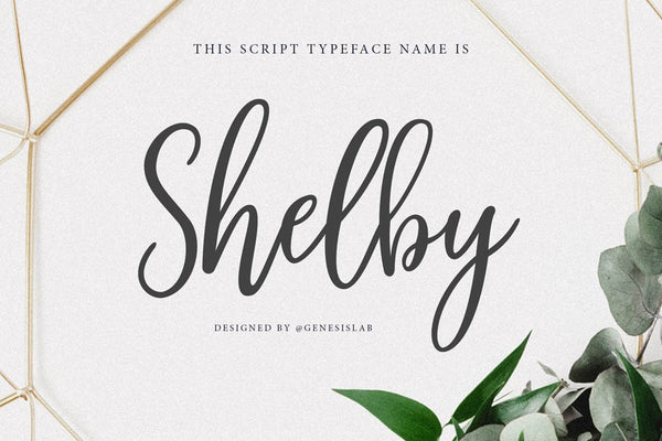 Shelby Script Font Family