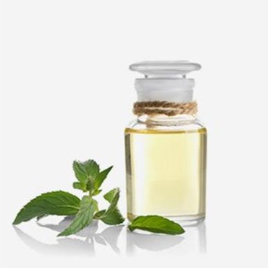 Lavantas Organic Peppermint Oil 10ml
