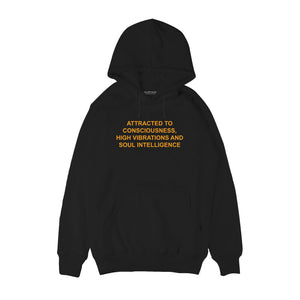 Attracted to consciousness higher vibration Hoodie