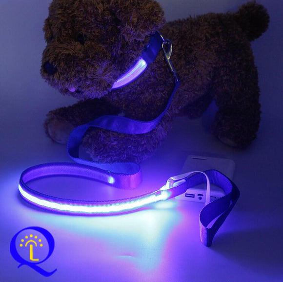 Shining Hand Holding Rope LED Pet Dog Traction Belt Nylon Dual Fiber Shining Dog Dog Traction Rope