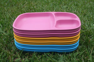Re-Pay Divided Tray- Multi Colour Available