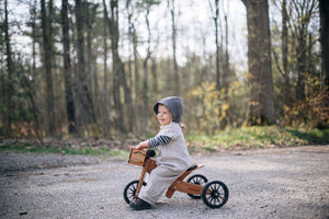 Tiny Tot 2 in 1 Trike/ Balance Bike- Bamboo