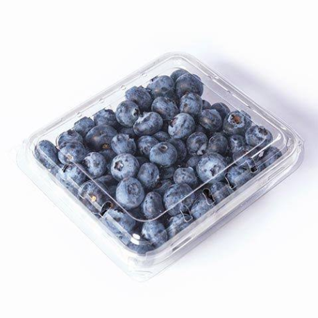 Organic Blueberries (230 grams) - KUNST.MX
