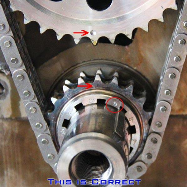 Camshafts & Valvetrain - Rollmaster Timing Set