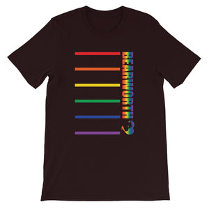 BEARWORTH Pride Stripes T-Shirt