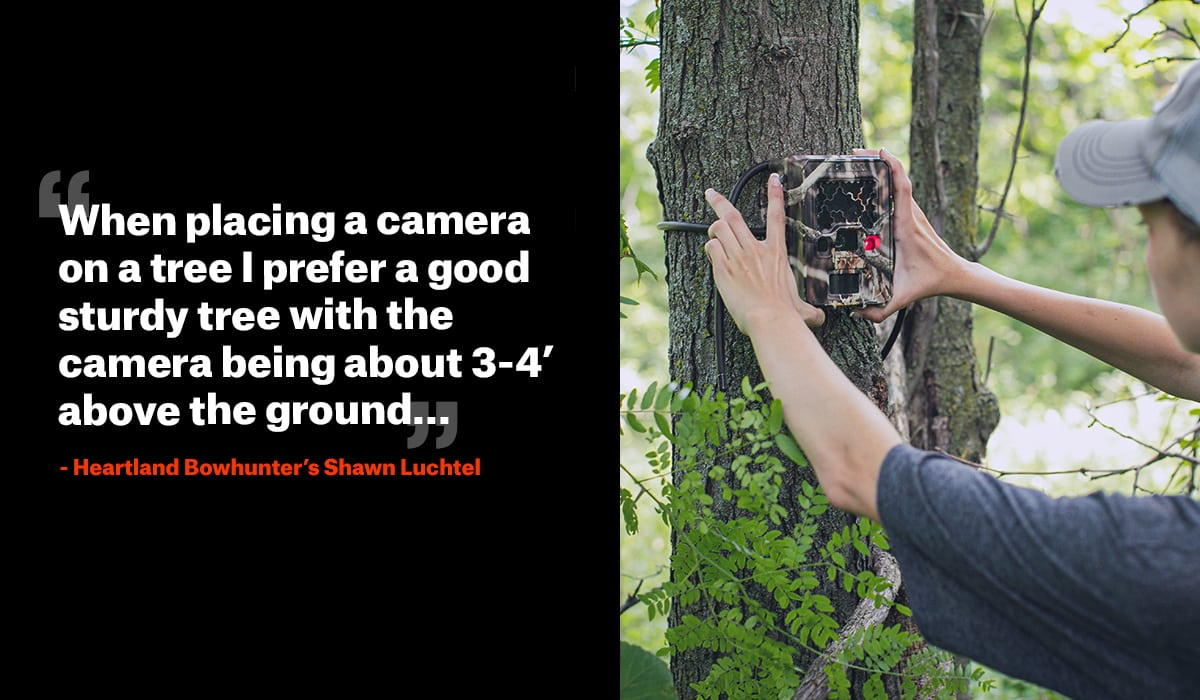 Top Tactics for Setting up a Trail Camera