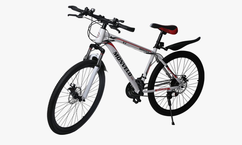 Mountain Bike with 21 Speeds