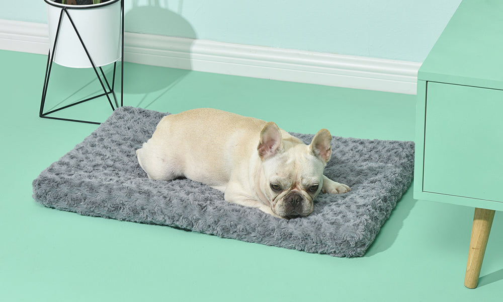 Washable Pet Bed For All Season Use