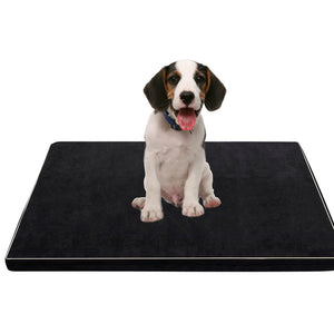 PaWz 5CM Memory Foam Orthopaedic Pet Bed Dog Puppy Mat Cat Pad Cushion XL