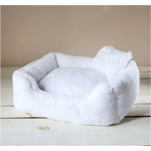 - The Divine Dog Bed