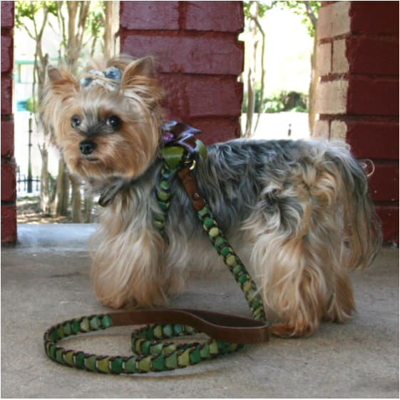 - Shade Of Green Leather Dog Harness
