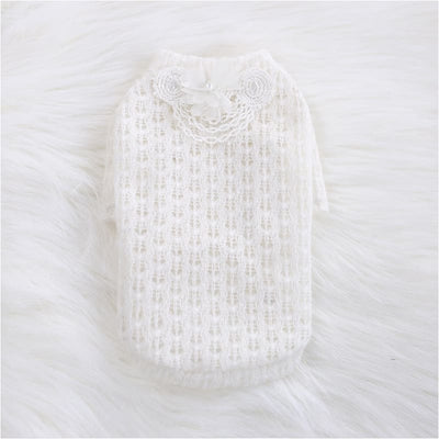 - Sweet Magnolia Dog Sweater NEW ARRIVAL