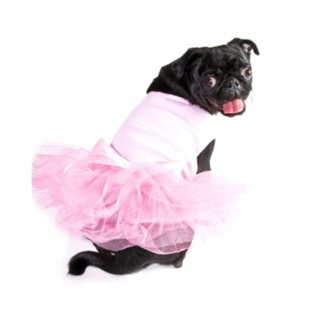 - Copy Of Live To Ride Eagle Dog Tutu New Arrival