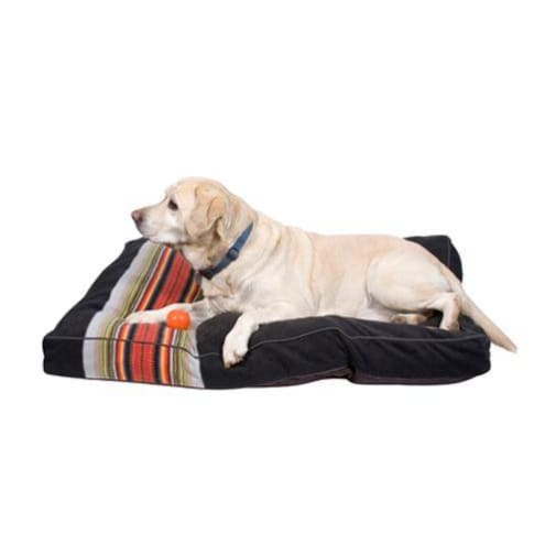 - Acadia National Park Pet Napper