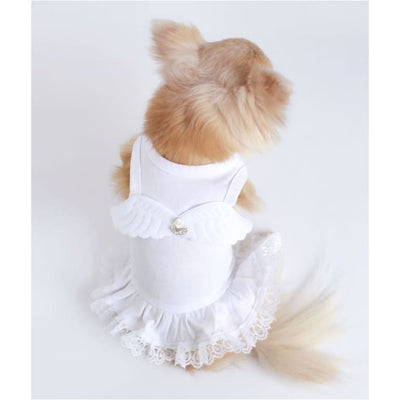 - Lil Angel Dog Dress