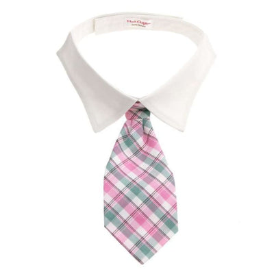 - Brooks Shirt Collar with Necktie