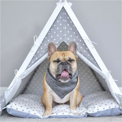 - The Dottie 2.0 Pet TeePee etsy luxury dog beds NEW ARRIVAL teepee dog beds teepee for dogs