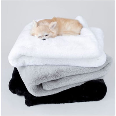 - Dove Gray Divine Dog Blanket